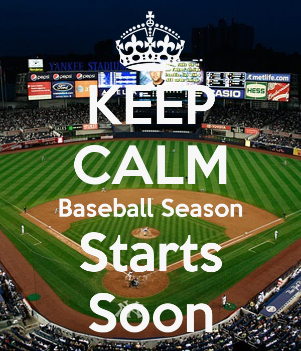 Image result for baseball season
