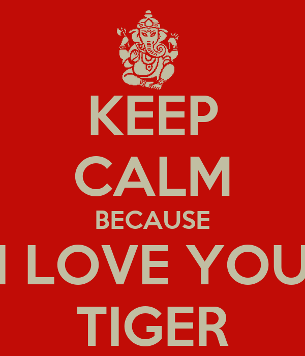 i love you tigers