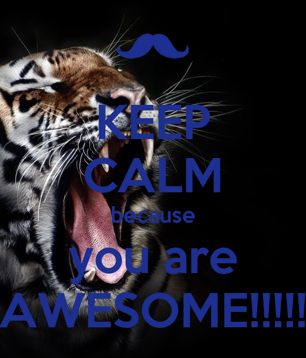 You Are Awesome: KEEP CALM Because You Are AWESOME!!!!! Poster