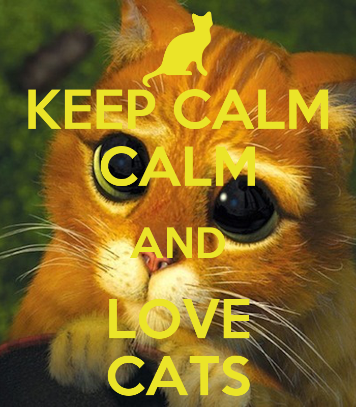 Keep Calm And Love Cats Poster Keep Calm Calm And Love Cats