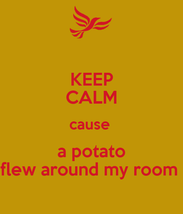 Keep Calm Cause A Potato Flew Around My Room Poster Lol
