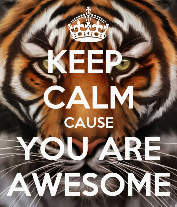 You Are Awesome: KEEP CALM CAUSE YOU ARE AWESOME Poster