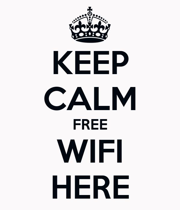 municipal wifi business plan