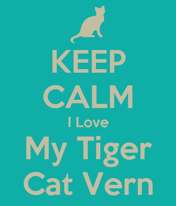 Cat Love Keep Calm i Love my Tiger Cat