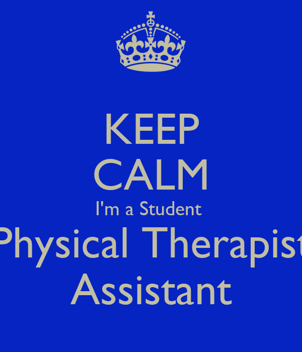 Physical Therapist Assistant best terms