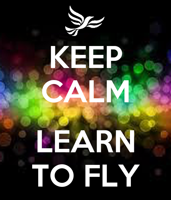 leaen to fly