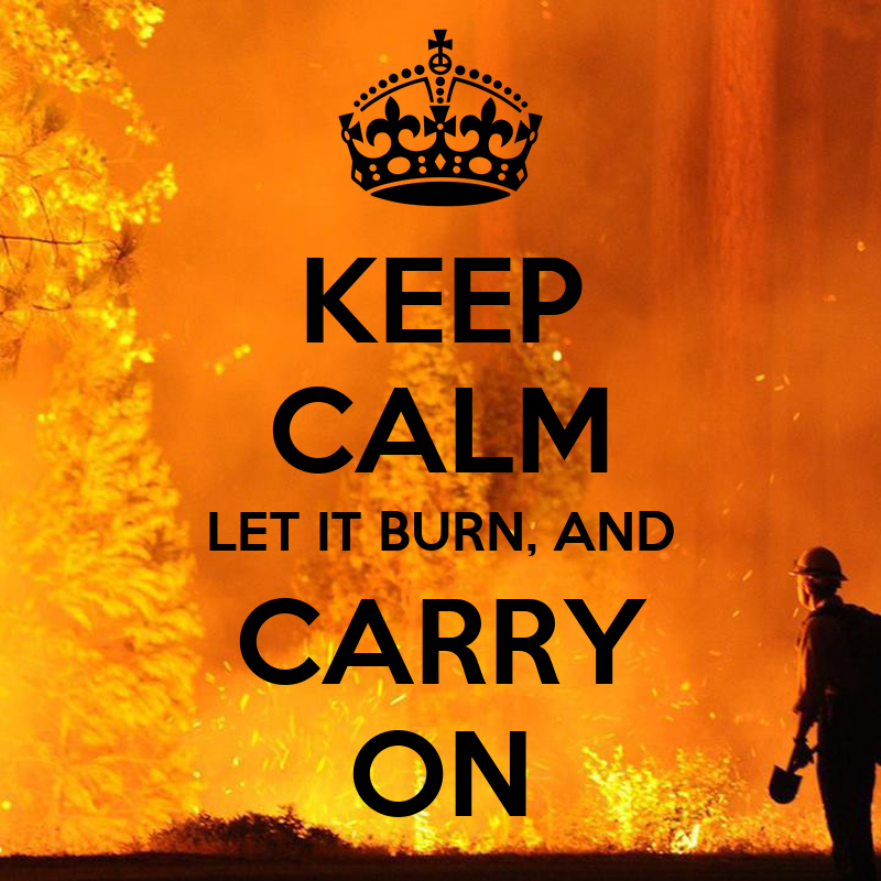 Keep calm let it burn and carry on keep calm and carry on image