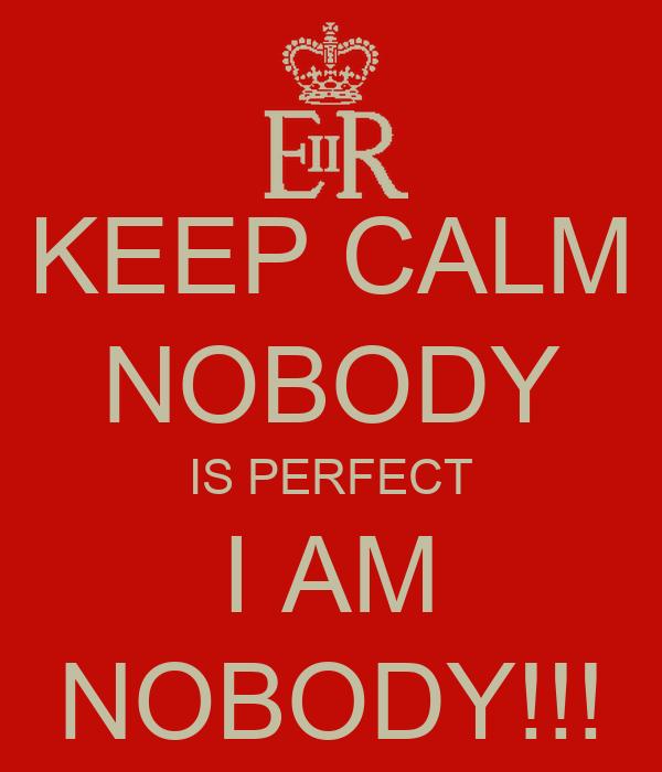 nobody is perfect spiel online