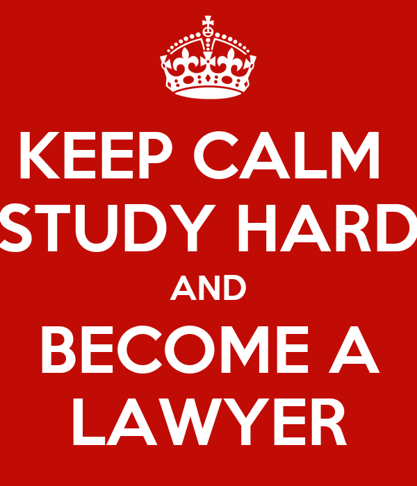 what to study to become a lawyer