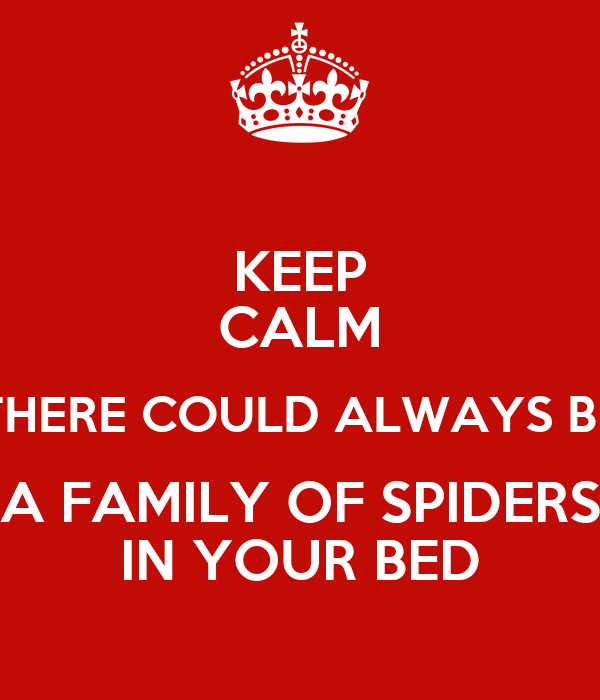how to keep spiders away from your bed