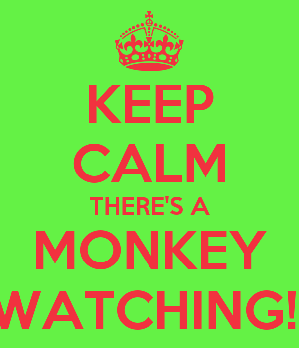 http://sd.keepcalm-o-matic.co.uk/i/keep-calm-there-s-a-monkey-watching.png