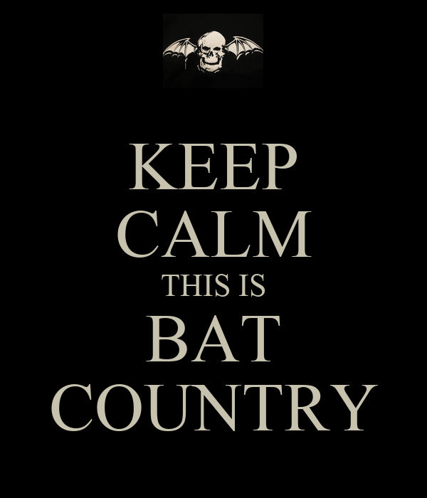 keep-calm-this-is-bat-country-2.png
