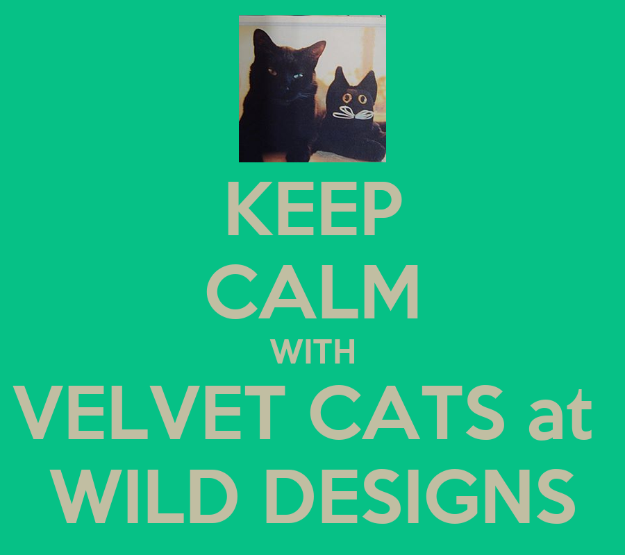 Keep calm with velvet cats at wild designs poster sr for Wild design