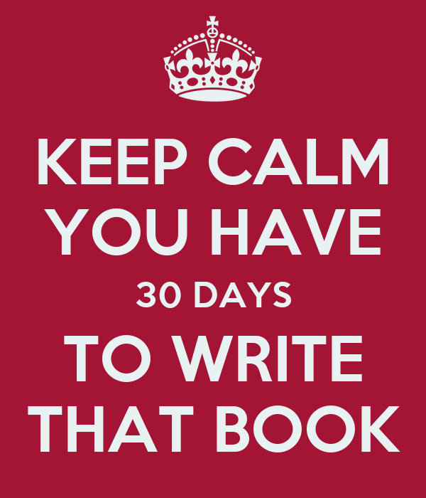 can you write a book in 30 days