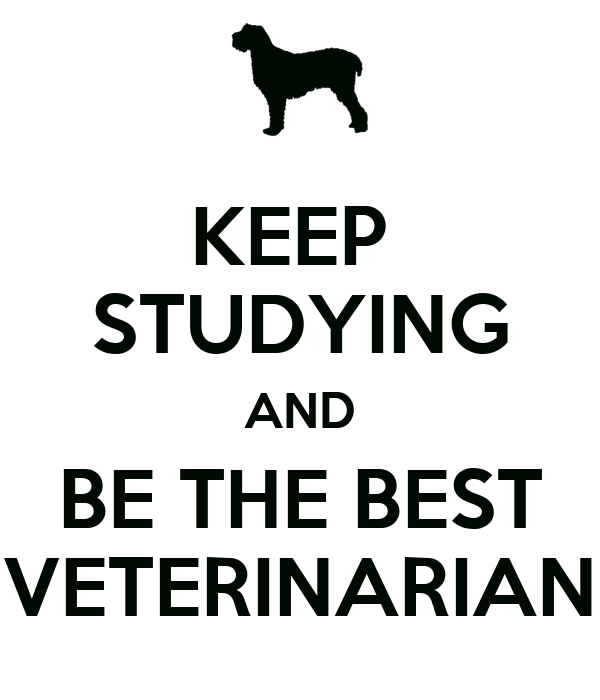 Keep Studying Wallpaper Keep Studying And be The Best