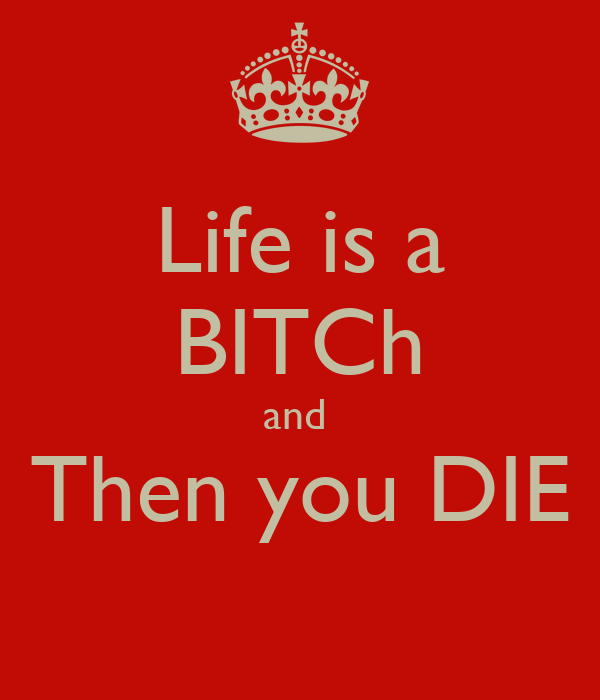 Lifes a bitch and then u die have