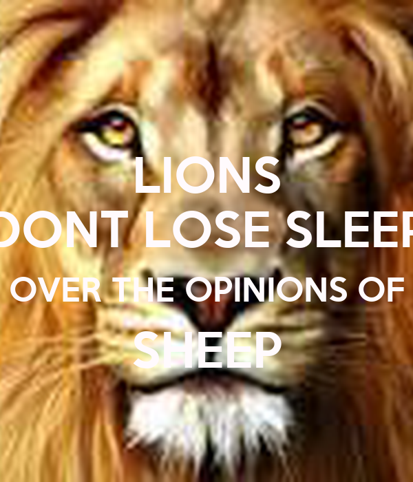 Lion Sheep Quote: LIONS DONT LOSE SLEEP OVER THE OPINIONS OF SHEEP Poster