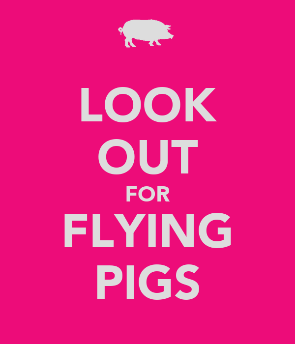 LOOK OUT FOR FLYING PIGS Poster   S   Keep Calm-o-Matic