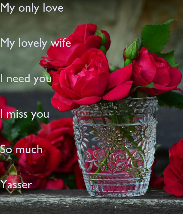My Only Love My Lovely Wife I Need You I Miss You So Much Yasser