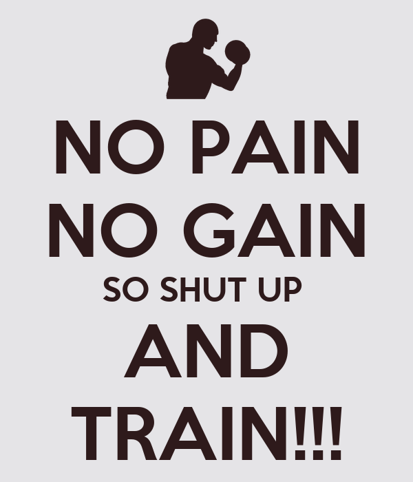 pains no gains essay no pains no gains essay