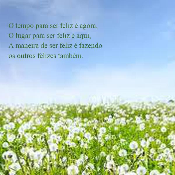 O tempo para ser feliz é agora, O lugar para ser feliz é ...