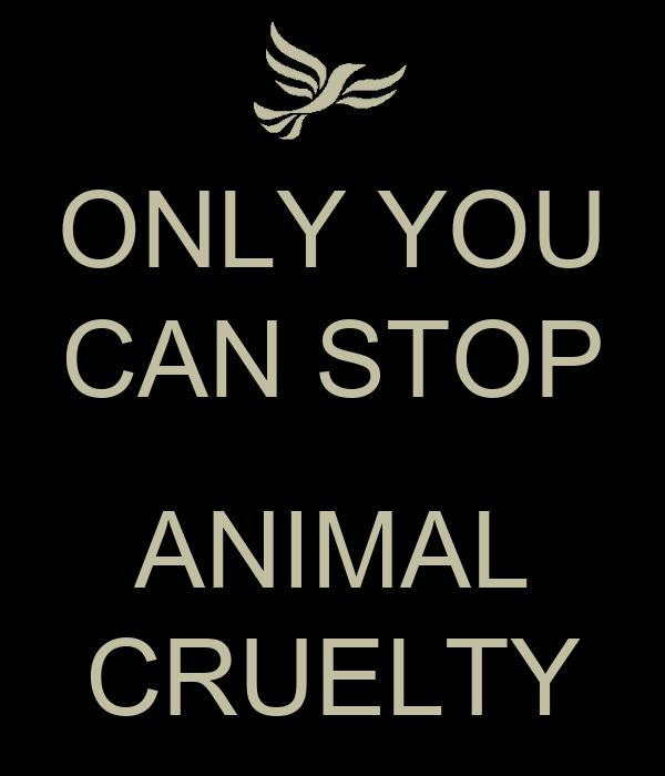 Persuasive speech on stopping animal testing