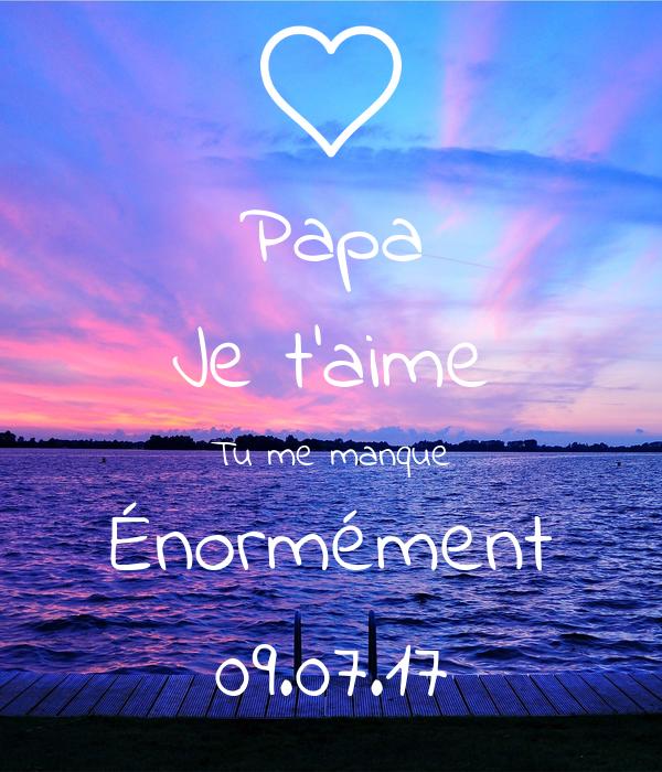 Papa Je Taime Tu Me Manque énormément 090717 Poster
