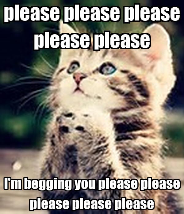 please-please-p...