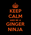 KEEP CALM AND BE A GINGER NINJA - Personalised Poster large