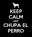 KEEP CALM AND CHUPA EL PERRO - Personalised Poster large
