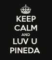 KEEP CALM AND LUV U  PINEDA  - Personalised Poster large
