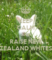 KEEP CALM AND RAISE NEW ZEALAND WHITES - Personalised Poster large