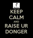 KEEP CALM AND RAISE UR DONGER - Personalised Poster large