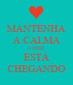 MANTENHA A CALMA O BEBÊ ESTÁ CHEGANDO - Personalised Poster large