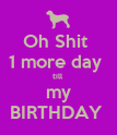 Oh Shit  1 more day  till  my BIRTHDAY  - Personalised Poster large