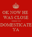 OK NOW HE  WAS CLOSE TRIED TO DOMESTICATE YA - Personalised Poster large