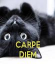 CARPE DIEM - Personalised Tea Towel: Premium