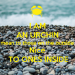 I AM AN URCHIN mean to those on the outside Nice TO ONES INSIDE - Personalised Tea Towel: Premium