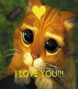 I LOVE YOU!!! - Personalised Tea Towel: Premium