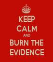 KEEP CALM AND BURN THE EVIDENCE - Personalised Tea Towel: Premium
