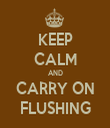 KEEP CALM AND CARRY ON FLUSHING - Personalised Tea Towel: Premium