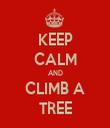KEEP CALM AND CLIMB A TREE - Personalised Tea Towel: Premium