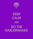 KEEP CALM AND DO THE HARLEMSHAKE - Personalised Tea Towel: Premium