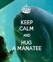 KEEP CALM AND HUG A MANATEE - Personalised Tea Towel: Premium