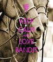 KEEP CALM AND LOVE BANDIT - Personalised Tea Towel: Premium