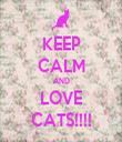 KEEP CALM AND LOVE CATS!!!! - Personalised Tea Towel: Premium
