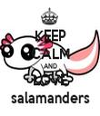 KEEP CALM AND LOVE salamanders - Personalised Tea Towel: Premium