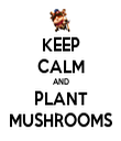 KEEP CALM AND PLANT MUSHROOMS - Personalised Tea Towel: Premium