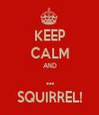 KEEP CALM AND ... SQUIRREL! - Personalised Tea Towel: Premium