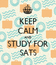 KEEP CALM AND STUDY FOR SATS - Personalised Tea Towel: Premium